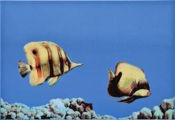 Декор Atem Mono  fish 2 27,5x40