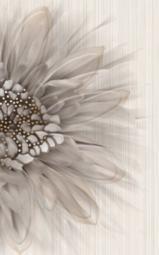 Вставка Golden Tile Зебрано бежевый К61301 250х400
